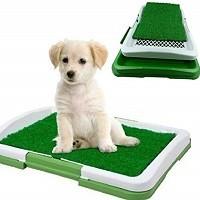 prezzi migliore lettiera cani grandi e piccoli