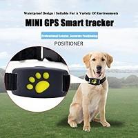 GPS per cani e gatti