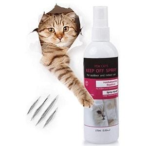 recensioni migliori repellenti per gatti efficaci, classifica, opinioni, consigli